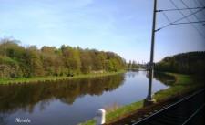 Paisaje desde el tren