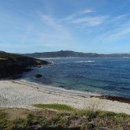 Playa de Arnado
